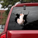[BV0061-snf-tnt] Parrot Crack car Sticker Parrot Lover
