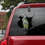 [BV0020-snf-tnt] Parrot Crack Sticker Birds Lover