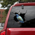 [BV0022-snf-tnt] Parrot Crack car Sticker Parrot Lover