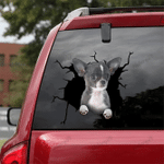 [DA0056-snf-tnt] Chihuahua Crack car Sticker dogs Lover