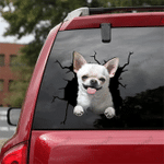 [DA0062-snf-tnt] Chihuahua Crack car Sticker dogs Lover