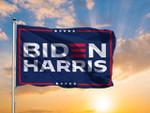 Blue Biden Harris 3D Printed Flag