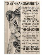 Never Forget That I Love You Love Gifts To My Granddaughter Vertical Poster