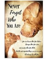 Never Forget Who You Are Lovely Pitbull Message Gifts For Dog Lovers Vertical Poster