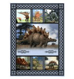 Stegosaurus Dinosaurs Picture Frames Gift For Dinosaur Lovers Fleece Blanket Sherpa Blanket