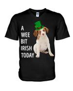 Brittany Irish Today Green St. Patrick's Day Guys V-neck