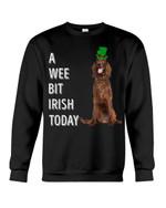 Irish Setter Irish Today Green St. Patrick's Day Printed Sweatshirt