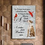 American Staffordshire Terrier And Cardinal Bird A Visitor Gift For Dog Lovers Matte Canvas