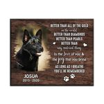 Better Than All Of The Gold Gift For Dog Lovers Custom Name And Photo And Number Matte Canvas