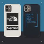 Simple The North Face iPhone Case