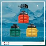 TNF Down Jacket Airpods Case
