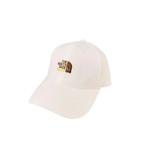 Summer TNF Sunscreen Baseball Cap