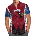 Sport Team Arizona Cardinals 5