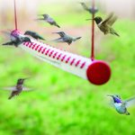 🔥 50% OFF - LIMITED TIME ONLY 🔥- Bob's Best Hummingbird Feeder