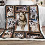 Siberian Husky Dog Sherpa Blanket DCB0301 81O60