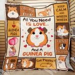 Guinea Pig Blanket NOV1302 69O52