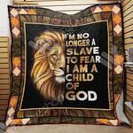 Lion Blanket SEP0501 90O43