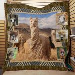 Alpaca Llamas J1506 83O31 Blanket