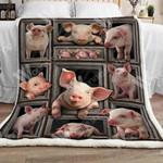 Pig Sherpa Blanket  DCB1101 81O60