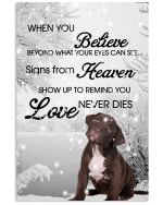 Pitbulls When You Believe Beyond What Your Eyes Can See Signs From Heaven Poster