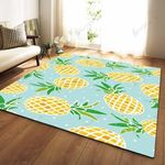 Teal Pineapple Print 3D Grapic Design Area Rug Home Decor