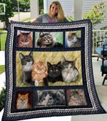 Cat CL11110081MDQ Quilt Blanket