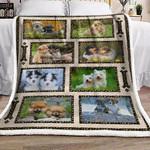 Puppy Dogs CL24100246MDF Sherpa Fleece Blanket