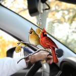 Cardinal HN200404 Car Hanging Ornament