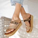 FleekComfy™ New Style Gladiator Sandals