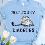 Diabetes Awareness Not Today Diabetes Graphic Unisex T Shirt, Sweatshirt, Hoodie Size S - 5XL