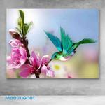 Canvas Prints-Pretty Hummingbird