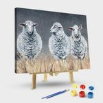 Three Sheep With Different Opinions