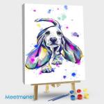 Multicolor  Basset Hound 02