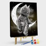 Cat Over The Moon