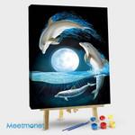 Dolphin Moon