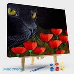 BLACK CAT – POPPY FLOWERS