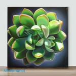 Mini-Succulents(Already Framed Canvas)