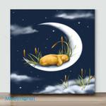 Mini – Sleeping on the moon(Already Framed Canvas)