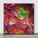 Mini – Succulents Huntington Gardens 2(Already Framed Canvas)