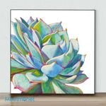 Mini – Succulent 2(Already Framed Canvas)