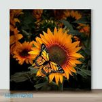 Mini-Sunflower And Butterfly#2(Already Framed Canvas)