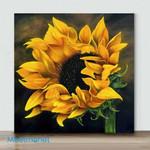 Mini-Sunflower(Already Framed Canvas)