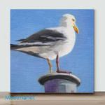 Mini-Peace Dove(AlreadyFramedCanvas)