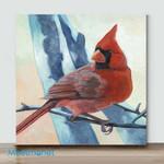 Mini-Red parrot(AlreadyFramedCanvas)
