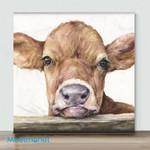 MiNi-Little Cow boy(Already Framed Canvas)