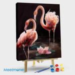 Flamingos in the lotus pond