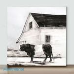Mini – Belted Galloway II(Already Framed Canvas)