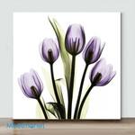 Mini -Tulips Imagine(Already Framed Canvas)