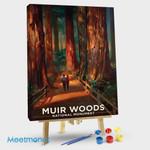 Muir Woods Magic