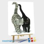 Black Cat And Tabby Cat
